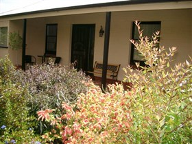 Cotton Palm Cottage - Australia Accommodation