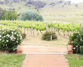 Brindabella Hills Winery - Australia Accommodation