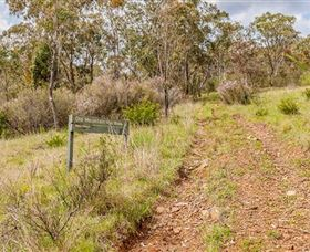 Old Mountain Road Walking Track - Australia Accommodation