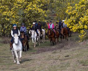 Burnelee Excursions on Horseback - Australia Accommodation