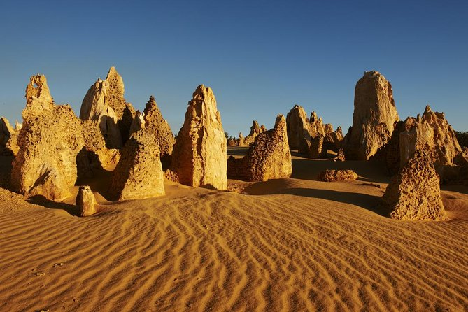 Pinnacles Day Trip from Perth Including Yanchep National Park - Australia Accommodation