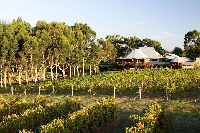 Margaret River and Geographe Bay Region Day Trip from Perth - Australia Accommodation