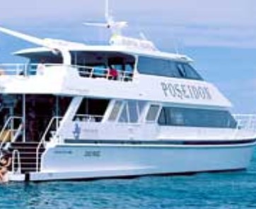 Poseidon Outer Reef Cruises - Australia Accommodation