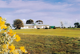 Lucindale Country Club - Australia Accommodation