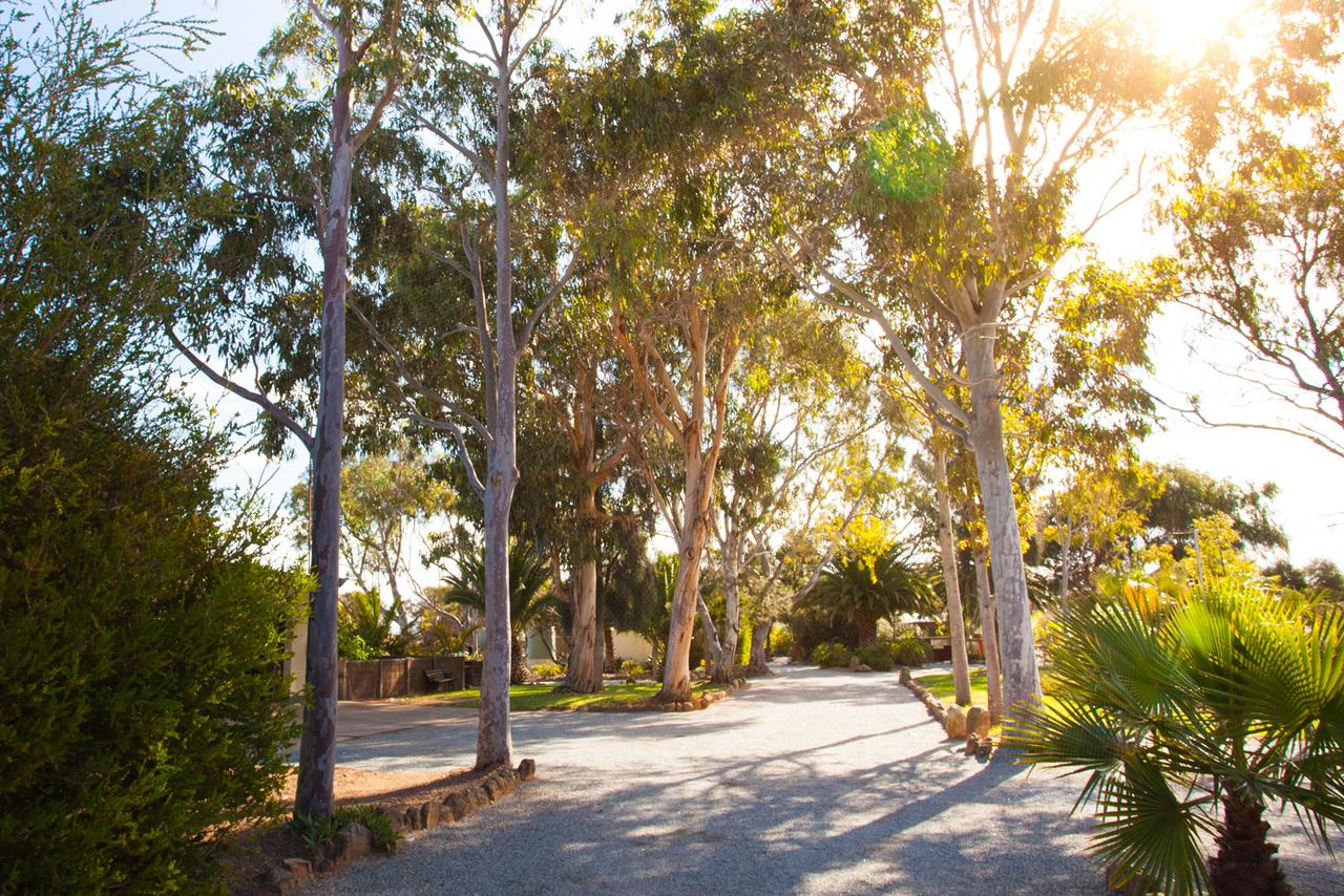 Modra's Apartments - Australia Accommodation