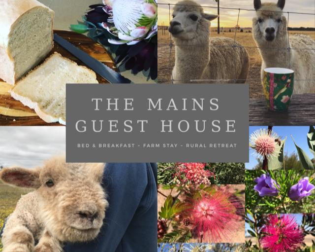 The Mains Guest House - Australia Accommodation