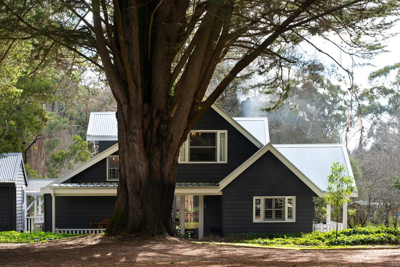 The Orchard - Australia Accommodation