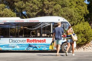 Rottnest Island Tour from Perth or Fremantle including Bus Tour - Australia Accommodation