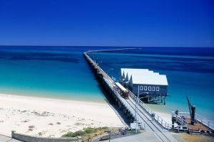 Full-Day Busselton Jetty Train Ride  Dophin Discovery - Australia Accommodation