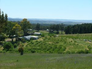 Taralee Orchards - Australia Accommodation
